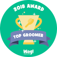 Top Wag! Walking Groomer of 2018 in Clearwater, FL