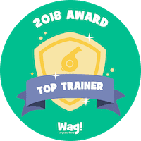 Top Wag! Walking Trainer of 2018 in Bayonet Point, FL